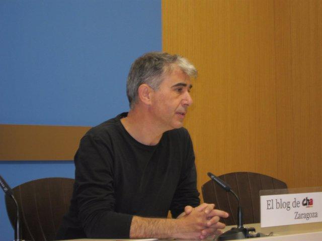 El portavoz de CHA, Juan Martín