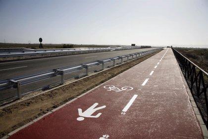 Jarquil Verde ejecutará la restauración paisajística entre El Alquián y El Toyo con 215 palmeras