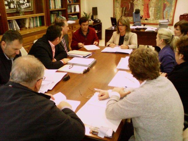 Reunión del Consejo Rector del Cemer