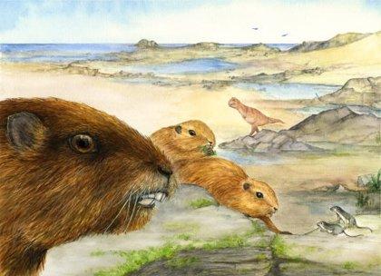 Un mamífero parecido a la marmota alumbra la evolución de los mamíferos