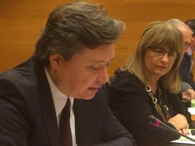 El conseller Luis Santamaría en su comparecencia en las Corts