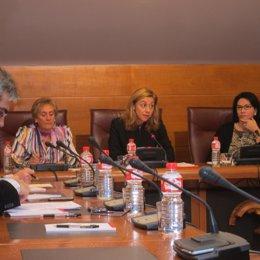 Cristina Mazas En La Comisión De Economía