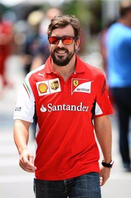 Fernando Alonso en el circuito de Interlagos
