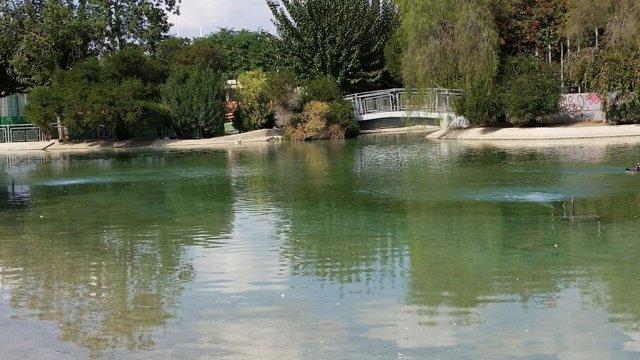 Lago el parque de Fofó