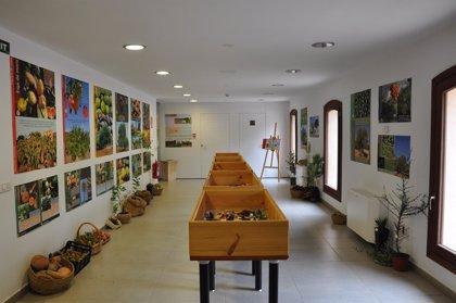 Sa Petrolera del Portitxol acoge la exposición 'Fruits de Tardor' hasta mediados de diciembre