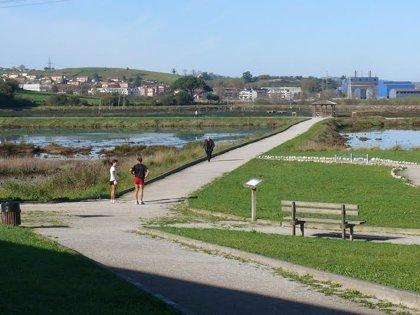Astillero.- Adjudicado el saneamiento, drenaje y recuperación ambiental de las Marismas Negras en 179.000 euros