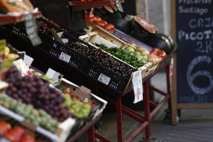 Hasta un 20% de la población española está por debajo de los niveles de una buena nutrición