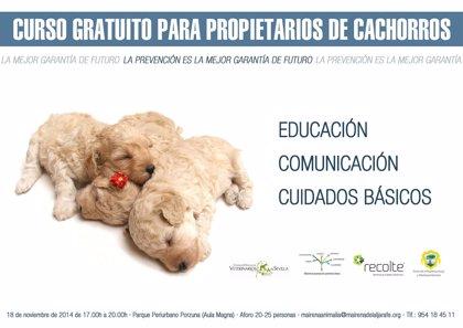Curso gratis para dueños de cachorros en Mairena en el marco del plan de concienciación sobre las mascotas