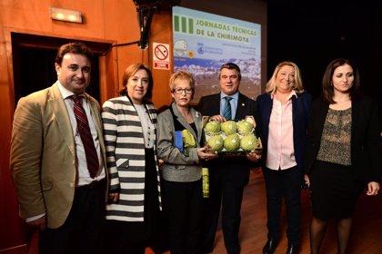 Víboras destaca que Andalucía es líder mundial en producción y superficie de chirimoya