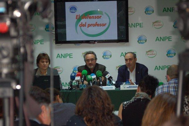 Imagen de la rueda de prensa de ANPE