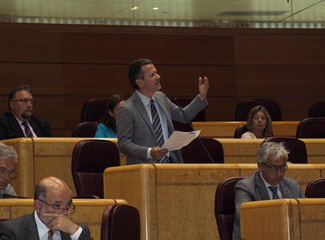El portavoz del PNV en el Senado, Jokin Bildarratz