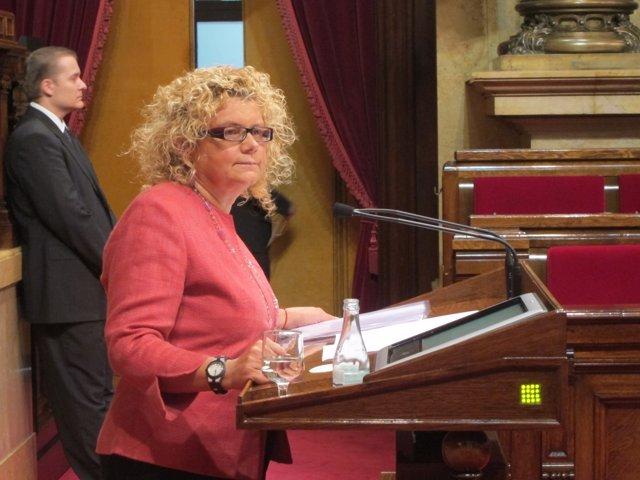 Marina Geli (PSC) (Archivo)