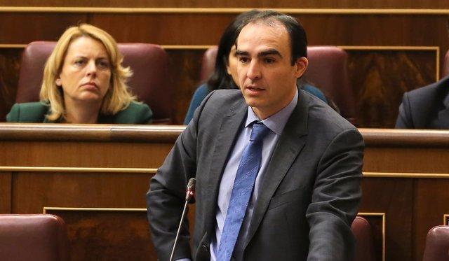 Javier Puente diputado PP por Cantabria
