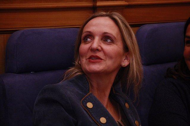Carmen Casero en el pleno