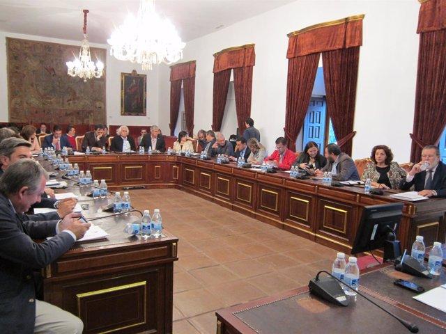Sesión del Pleno de la Diputación de Córdoba