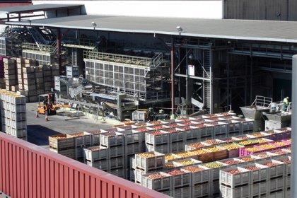 Indulleida invierte tres millones de euros y crea diez empleos en Alguaire (Lleida)