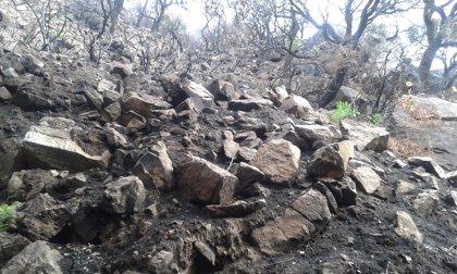 Junta anuncia el inicio de los trabajos de restauración del sendero del río de la Miel tras el incendio de julio