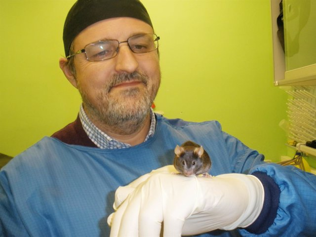 El profesor Guillermo López Lluch, del CABD, con uno de los ratones