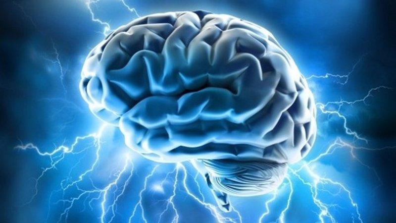 Identifican el punto débil del cerebro para el Alzheimer y la esquizofrenia