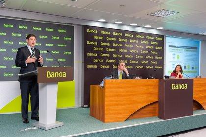 """Economía.- (Ampl.) Goirigolzarri ve """"razonable"""" que el FROB continúe con las desinversiones en Bankia a partir de 2015"""