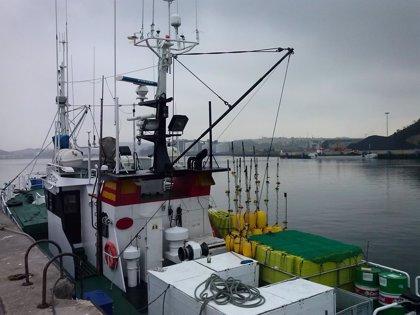 Organizaciones ecologistas hacen una petición a la ministra de Medio Ambiente para que acabe con la sobrepesca