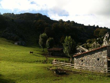 El Gobierno asturiano aprueba el decreto que reconoce la profesión de guía de montaña