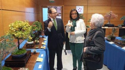 El Real Jardín Botánico de Córdoba acoge la XIII Exposición de Otoño de Bonsái