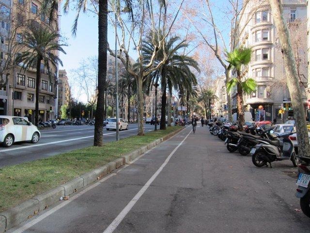 Un Carril Bici En La Avenida Diagonal De Barcelona