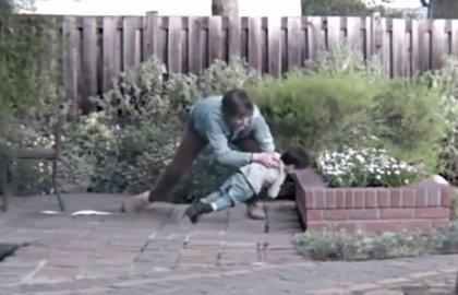 18 ocasiones en las que el instinto de un padre salvó la vida a sus hijos