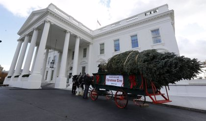 La Casa Blanca recibe su tradicional árbol de Navidad
