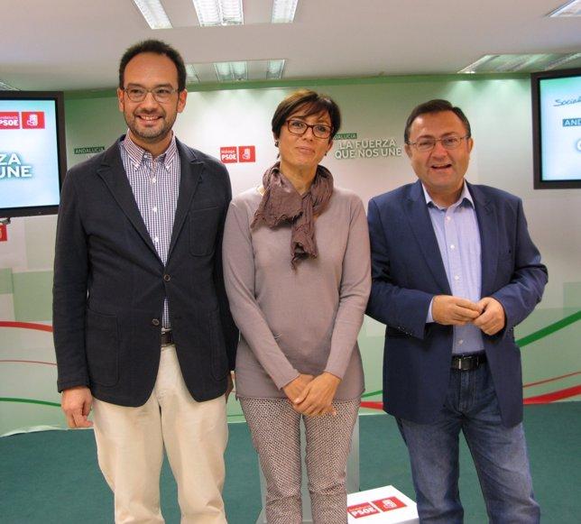 Antonio Hernando, María Gámez y Miguel Ángel Heredia PSOE