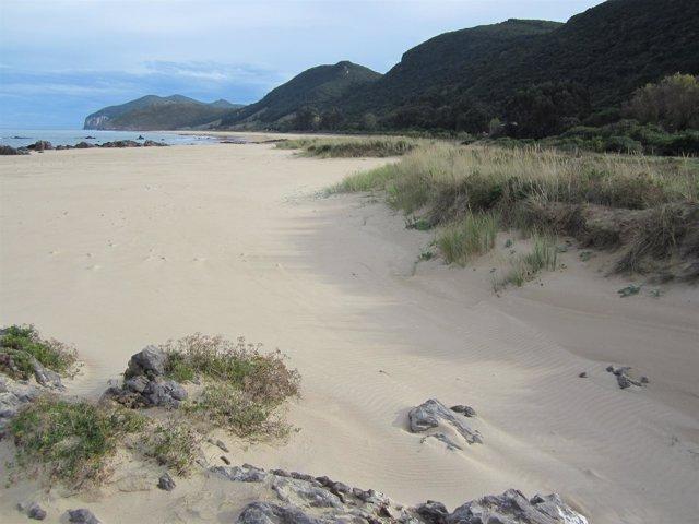 Playa de Trengandín en Noja
