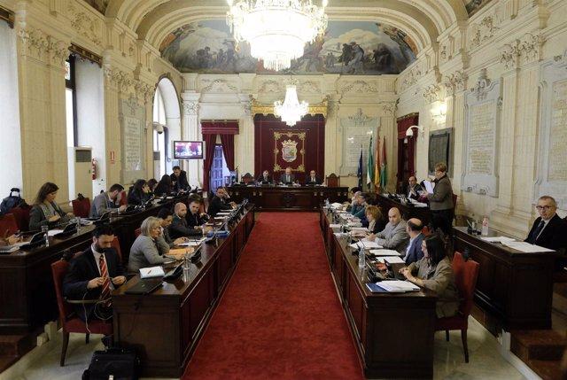 Pleno del Ayuntamiento de Málaga de noviembre 2014