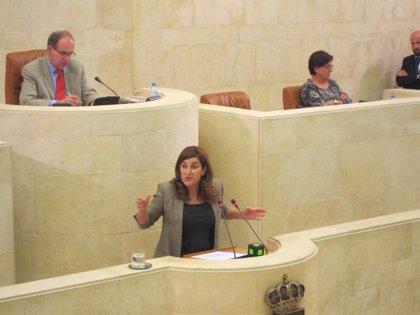"""CANTABRIA.-Pleno.-Gobierno """"no renuncia"""" a """"culminar"""" la Ley regional de Derechos de las Personas con Discapacidad esta legislatura"""
