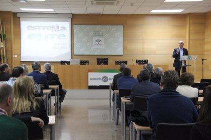 La Junta apoyará la participación de 69 equipos andaluza en ligas nacionales a través del programa Estrella Élite