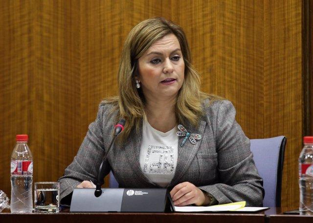 La consejera de Medio Ambiente, María Jesús Serrano, en el Parlamento