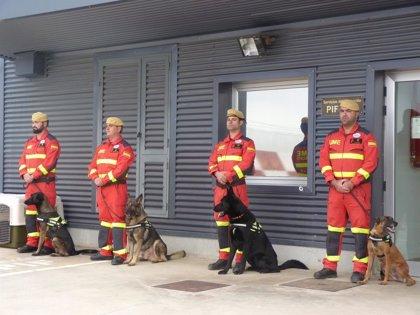 Delegación y la UME establecen el proceso de certificación zoosanitaria de perros de rescate en misiones internacionales