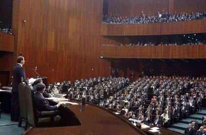 La Cámara de Diputados mexicana plantea restringir el derecho de manifestación