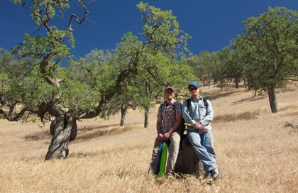 California sufre la peor sequía en 1.200 años