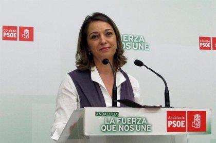 """Ambrosio (PSOE) dice que liderará """"la creación de empleo desde el Ayuntamiento"""", si es alcaldesa"""