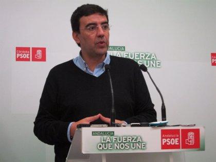 """PSOE-A valora la """"coordinación y trabajo conjunto"""" con IULV-CA en la Junta"""