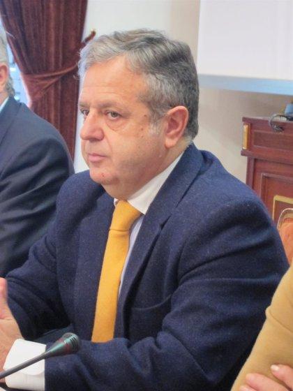 """Fuentes anuncia que la Virgen de la Piedad de Palma """"se puede restaurar"""" y que la Diputación ayudará a ello"""