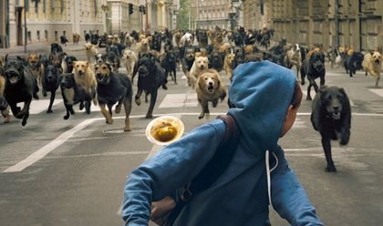 Los Perros atacan humanos en el tráiler de White God, galardonada en Cannes