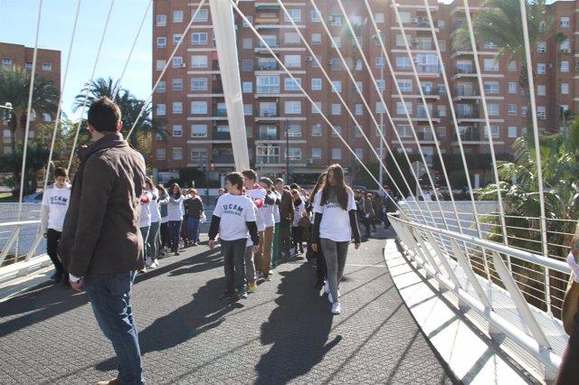 Estructura vibratoria de la pasarela Jorge Manrique de Murcia
