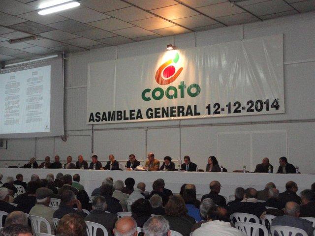 La Asamblea de Coato reelige a José Luis Hernández como presidente