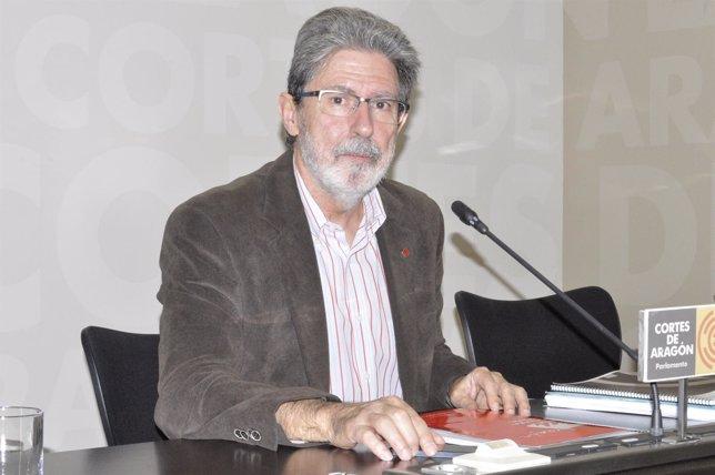 Adolfo Barrena (IU) en las Cortes de Aragón.