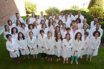 La Universidad de Navarra ofrece formación online de expertos en alimentación geriátrica