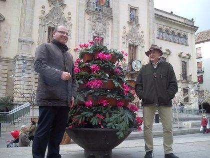 El Ayuntamiento empieza a adornar con pirámides de flores la Plaza de Santa María y a arreglar sus fuentes