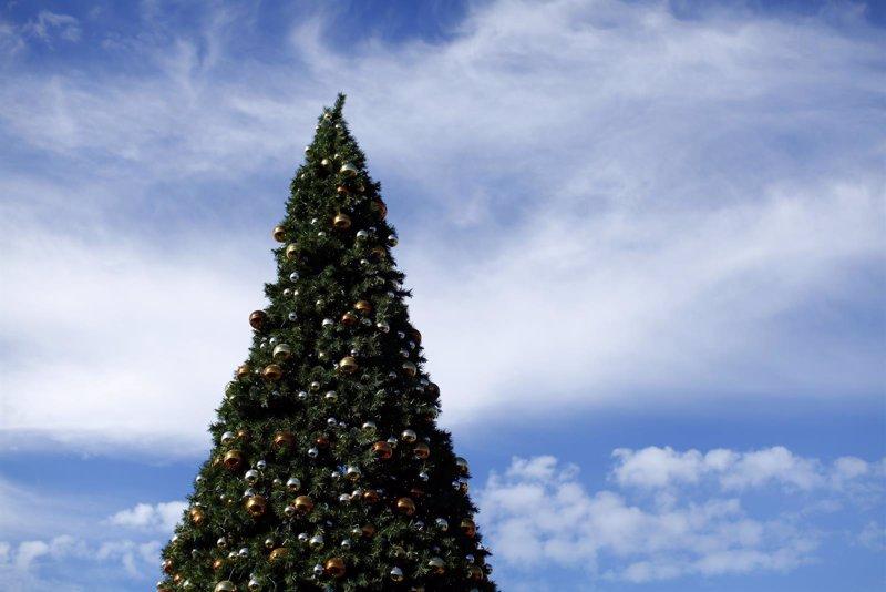 Cinco cosas que quizás no sabes de los árboles de Navidad