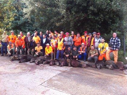 Abaten 15 jabalíes en Castell-Platja d'Aro para reducir destrozos y riesgo de accidentes